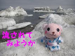 流氷03.JPG