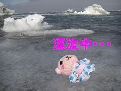 流氷04.JPG